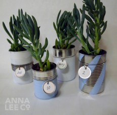 Eco Friendly DIY Tin Can Planters by Anna Lee Company