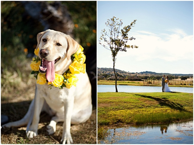 Modern Rustic Vintage Yellow Grey Ranch Wedding