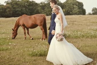Magical Vintage Carousel DIY Barn Wedding Part 2