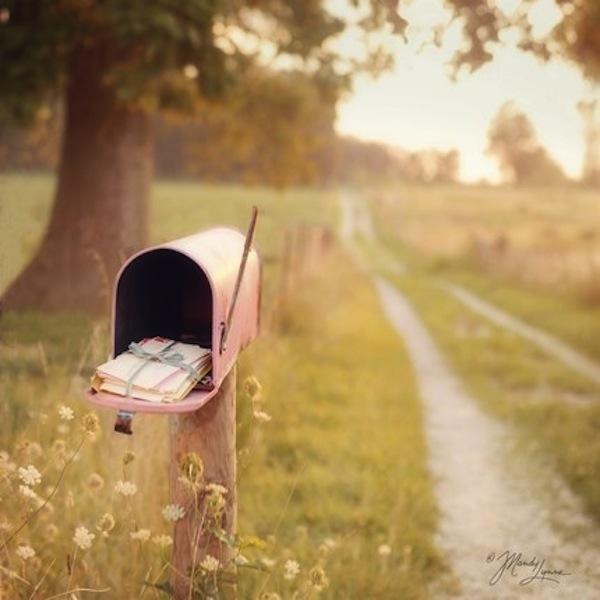 mandy lynne pink mailbox