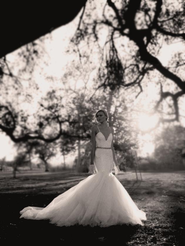 29f014aaa4 New Bridal Collection Crush  Lauren Elaine Wedding Dresses - Weddbook