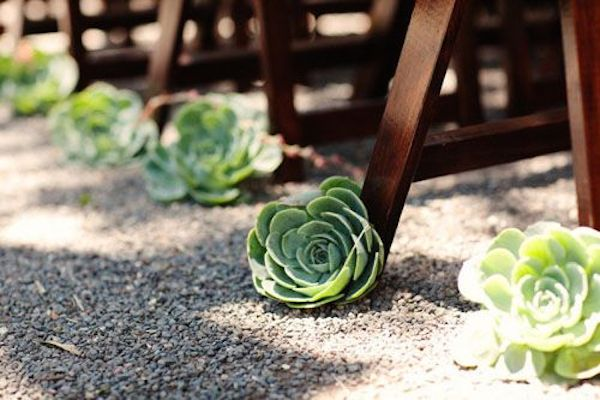 Ultimate Inspiration Guide for Succulents at your Wedding | Bridal Musings Wedding Blog 1