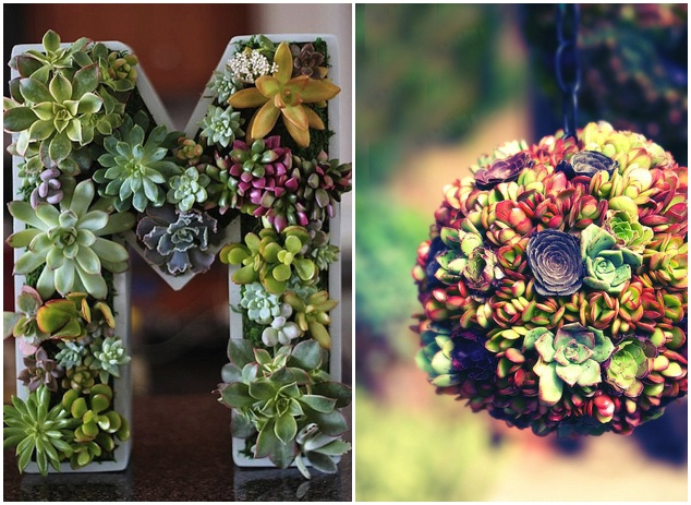 Ultimate Inspiration Guide for Succulents at your Wedding | Bridal Musings Wedding Blog 25