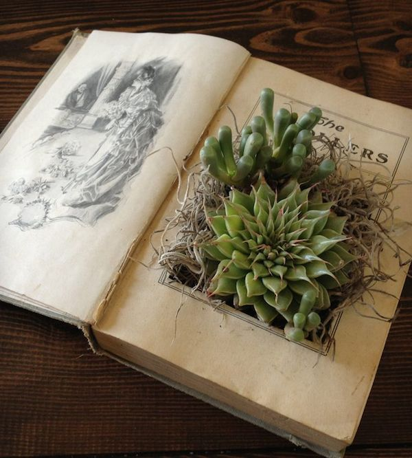 Ultimate Inspiration Guide for Succulents at your Wedding | Bridal Musings Wedding Blog 31