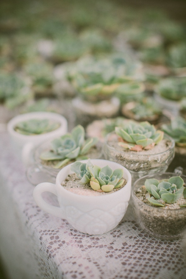 Ultimate Inspiration Guide for Succulents at your Wedding | Bridal Musings Wedding Blog 32