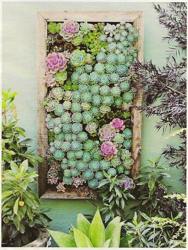 Ultimate Inspiration Guide for Succulents at your Wedding | Bridal Musings Wedding Blog 8