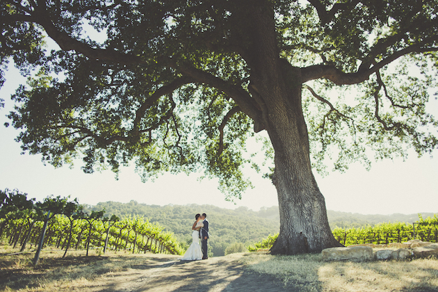 Super Pinnable Vineyard Wedding | Sarah Kathleen Photography | Bridal Musings Wedding Blog 39