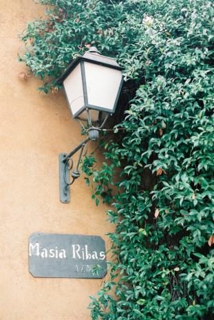 View More: http://enroute.pass.us/etiandfrancois