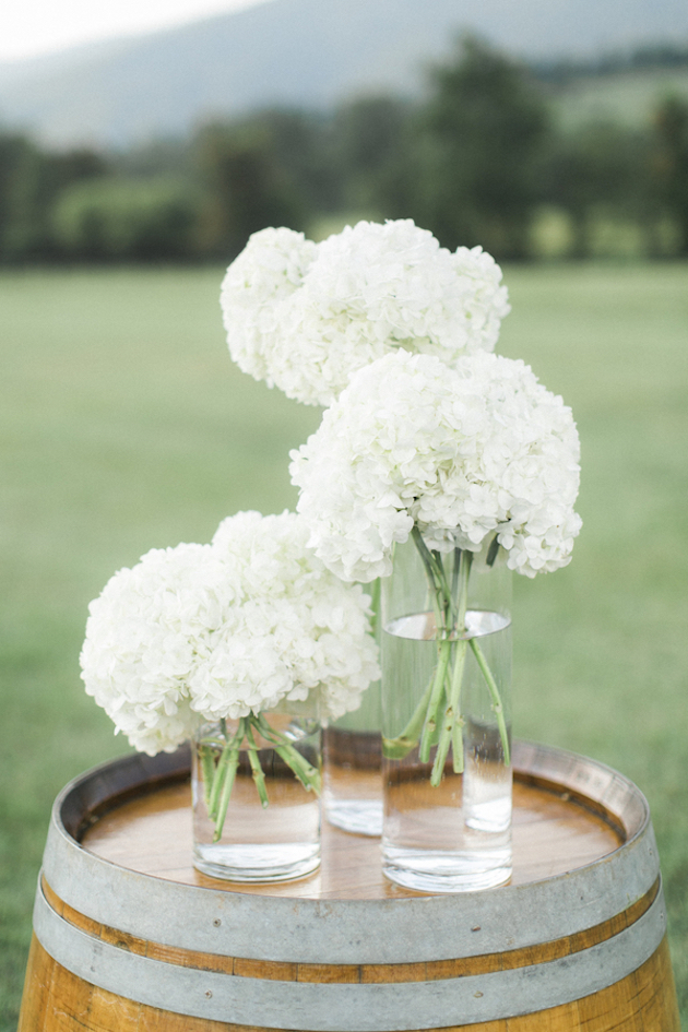Fun Barbecue Wedding | Stephanie Yonce Photography | Bridal Musings Wedding Blog 3